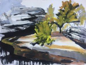 Wattamola wattles - ink, gouache, graphite on paper, Copyright Ochre Lawson